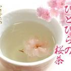 Obubu Tea Sakura Tea