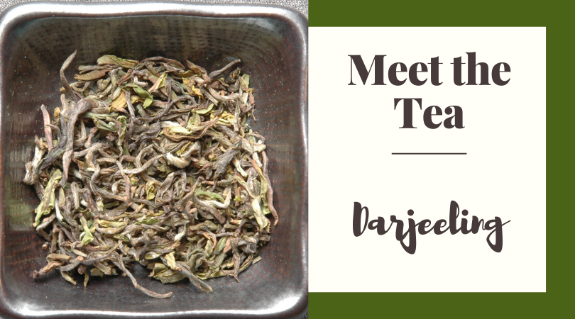 Meet the Tea: Darjeeling