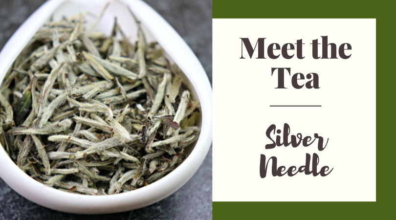Meet the Tea: Silver Needle