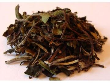 Light of Day Organics All White Tea
