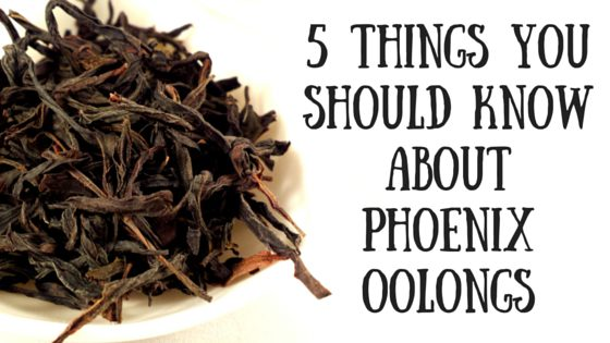 5 Things You Should Know About Phoenix Oolongs