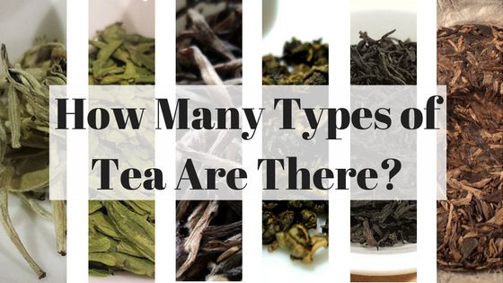 How Many Types of Tea are There?