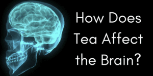 How Does Tea Affect the Brain?