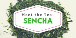 Meet the Tea: Sencha