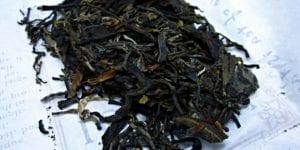 Crimson Lotus Jade Rabbit Puerh Tea