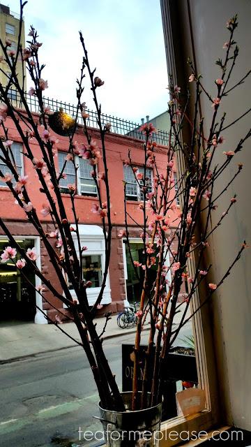 Flowers in tea shop window