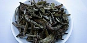 Upton Tea Imports Jinggu Spring Buds