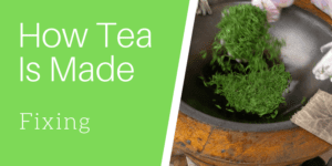 How Tea Is Made: Fixing