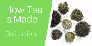 How Tea Is Made: Oxidation