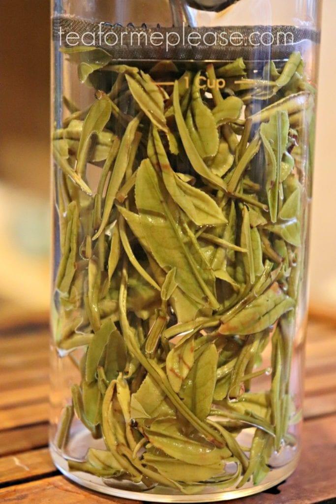 Masters Yu Qian Anji Bai Cha after brewing