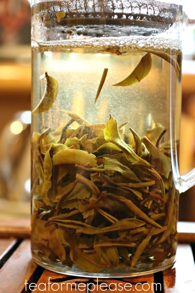 Masters Balasun First Flush Darjeeling brewing in water