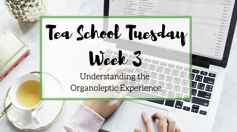 Tea School Tuesday – Understanding the Organoleptic Experience – Week 3