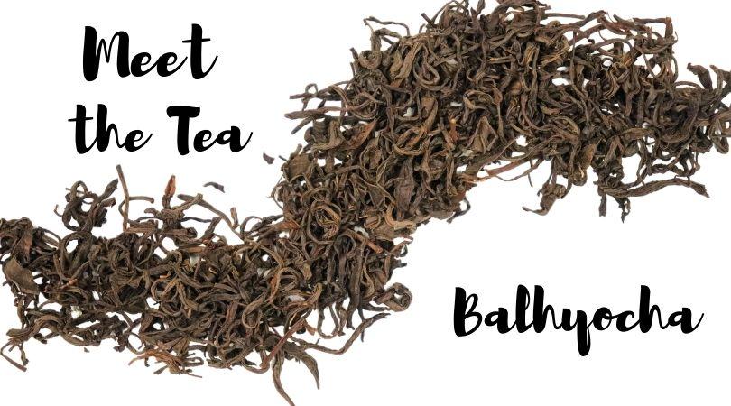 Meet the Tea: Balhyocha