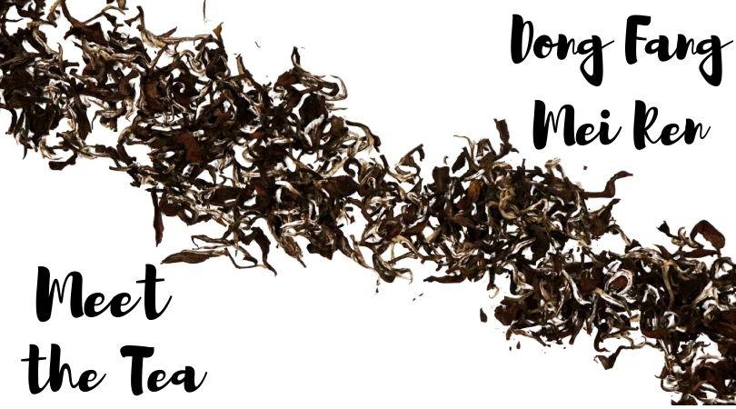 Meet the Tea: Dong Fang Mei Ren