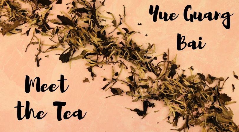 Meet the Tea: Yue Guang Bai (Moonlight White)