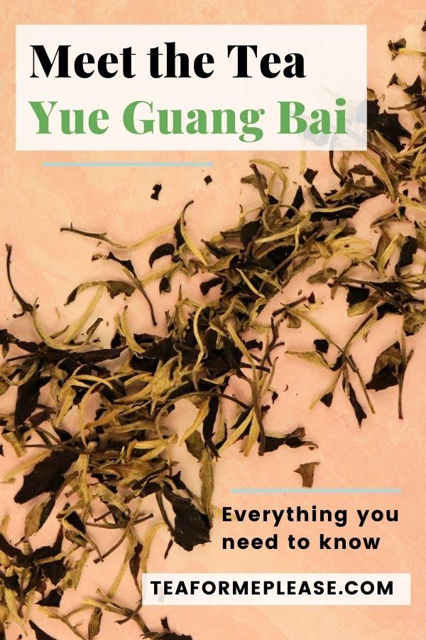 Yue Guang Bai - Pin It