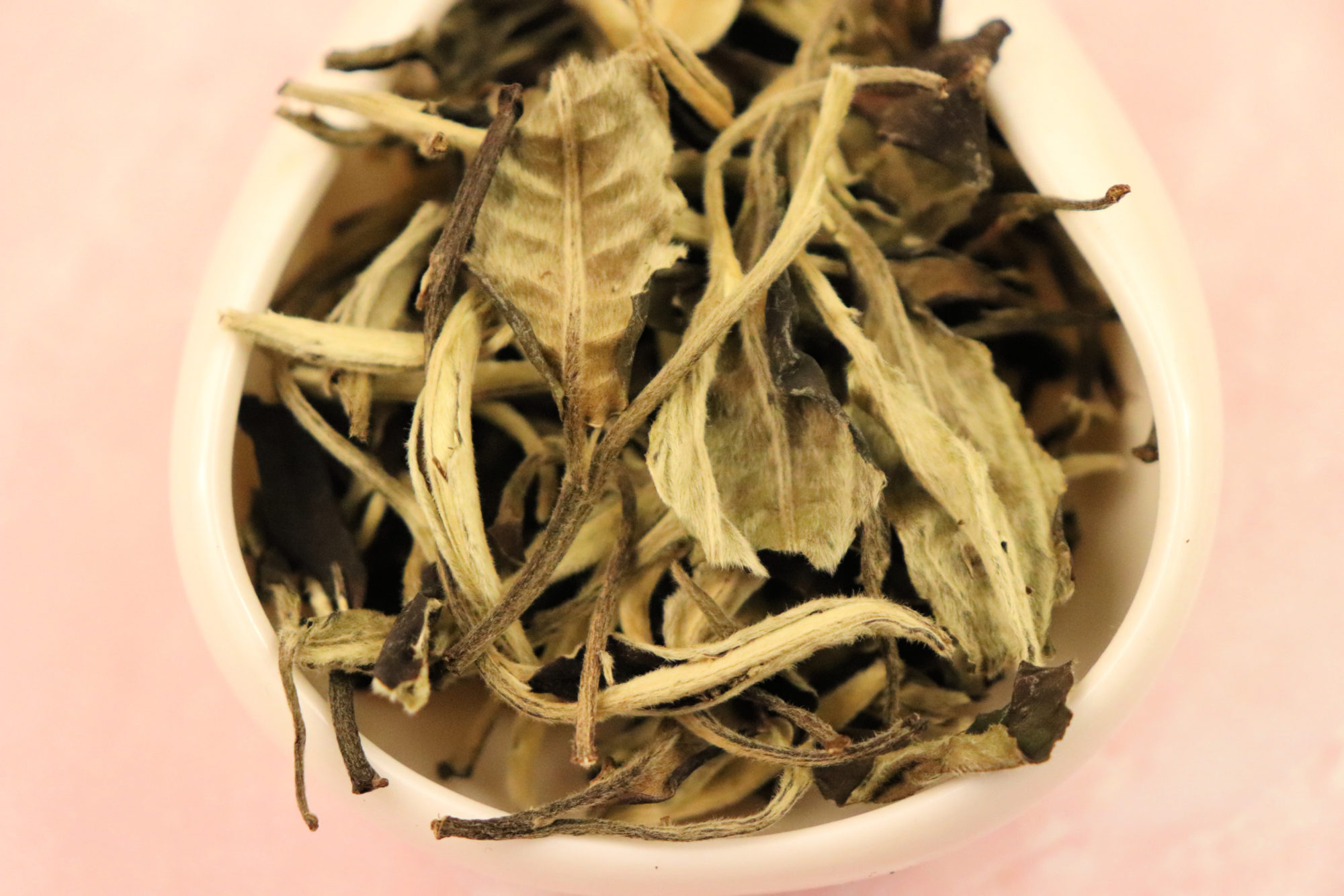 Yue Guang Bai - Moonlight White tea leaves