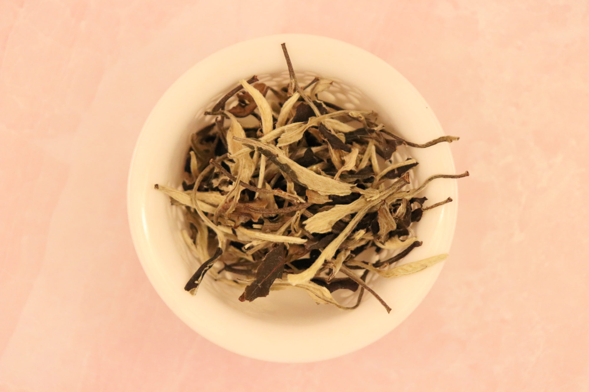 Moonlight White Tea leaves in a gaiwan