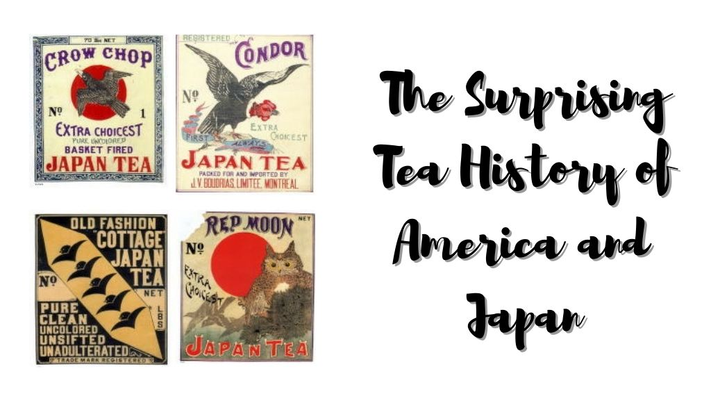 The Surprising Tea History of America and Japan