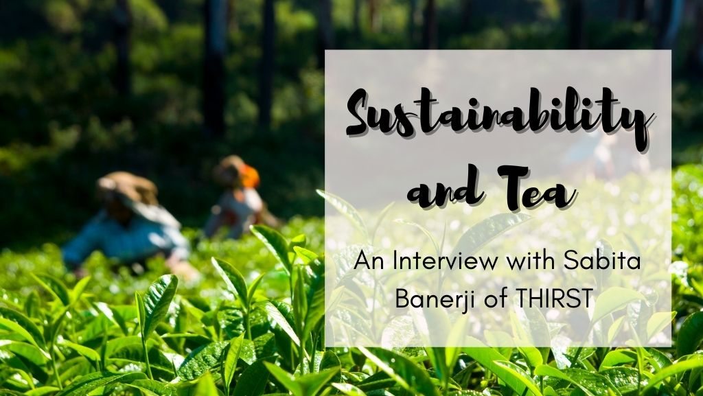 Sustainability and Tea – An Interview with Sabita Banerji of THIRST