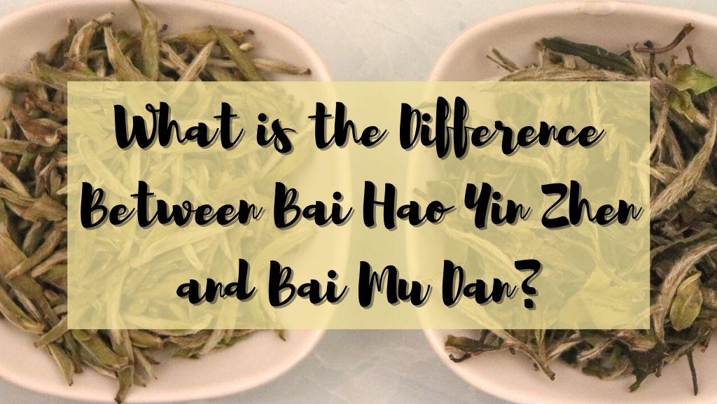 What is the Difference Between Bai Hao Yin Zhen and Bai Mu Dan?