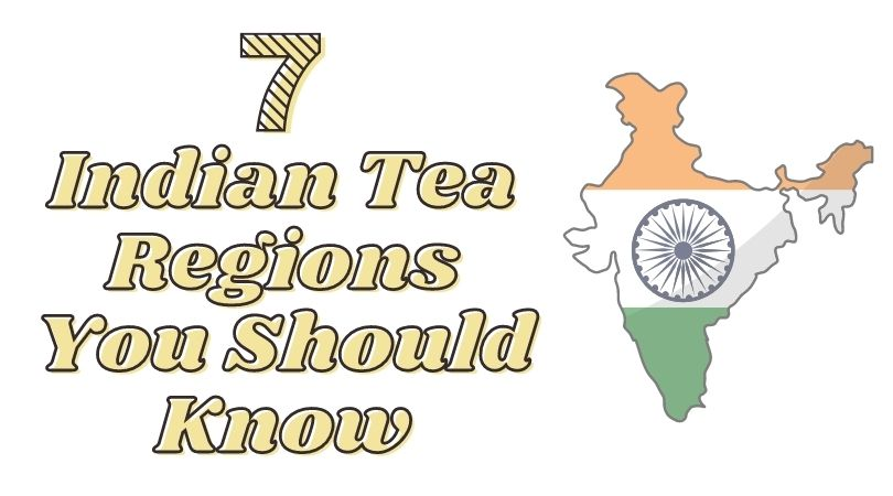 7 Indian Tea Regions You Should Know